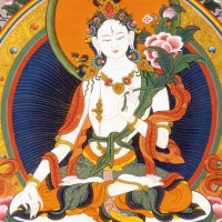 A Song Of Longing For Tara The Infallible